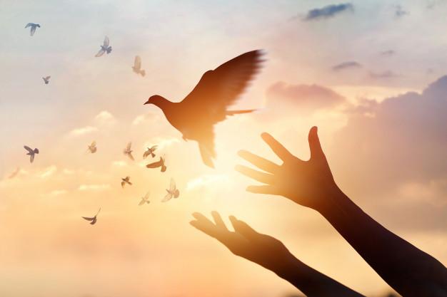 """Komentáre k 1. nedeli v cezročnom období """"A"""" – Krst Krista Pána"""